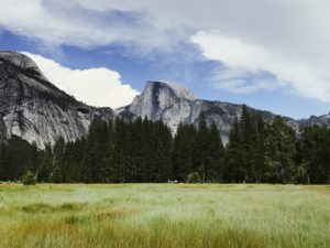 Half Dome Valley Floor