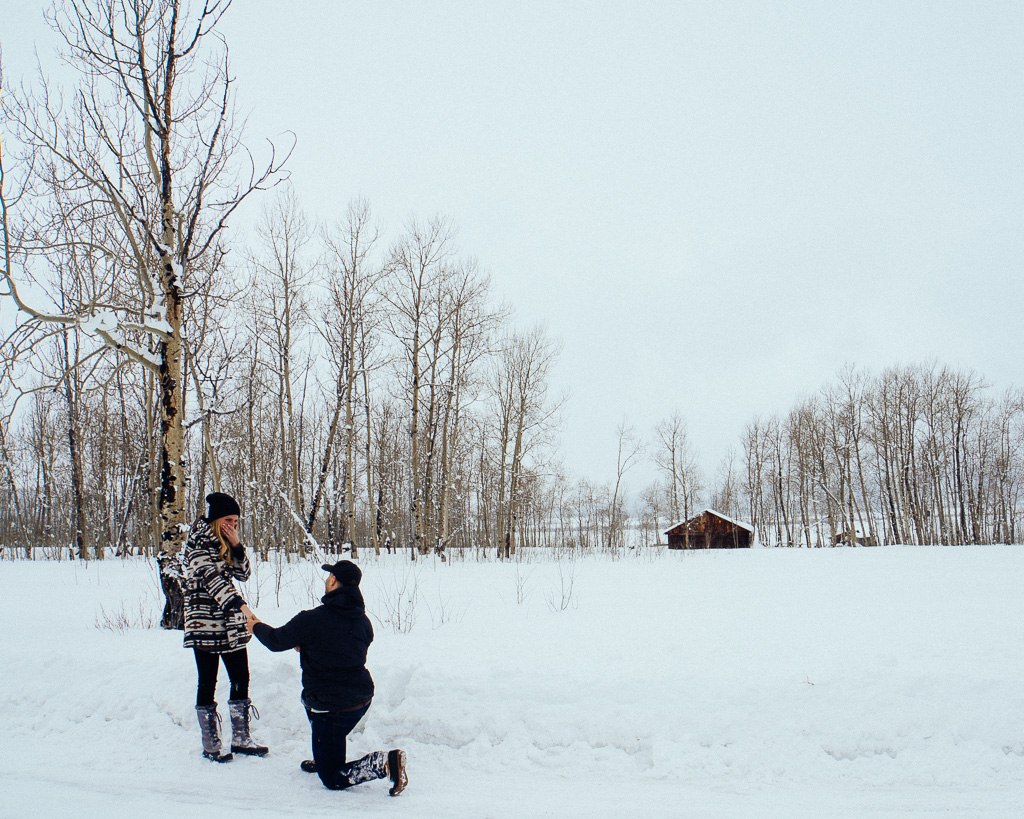 Jackson Hole, WY proposal